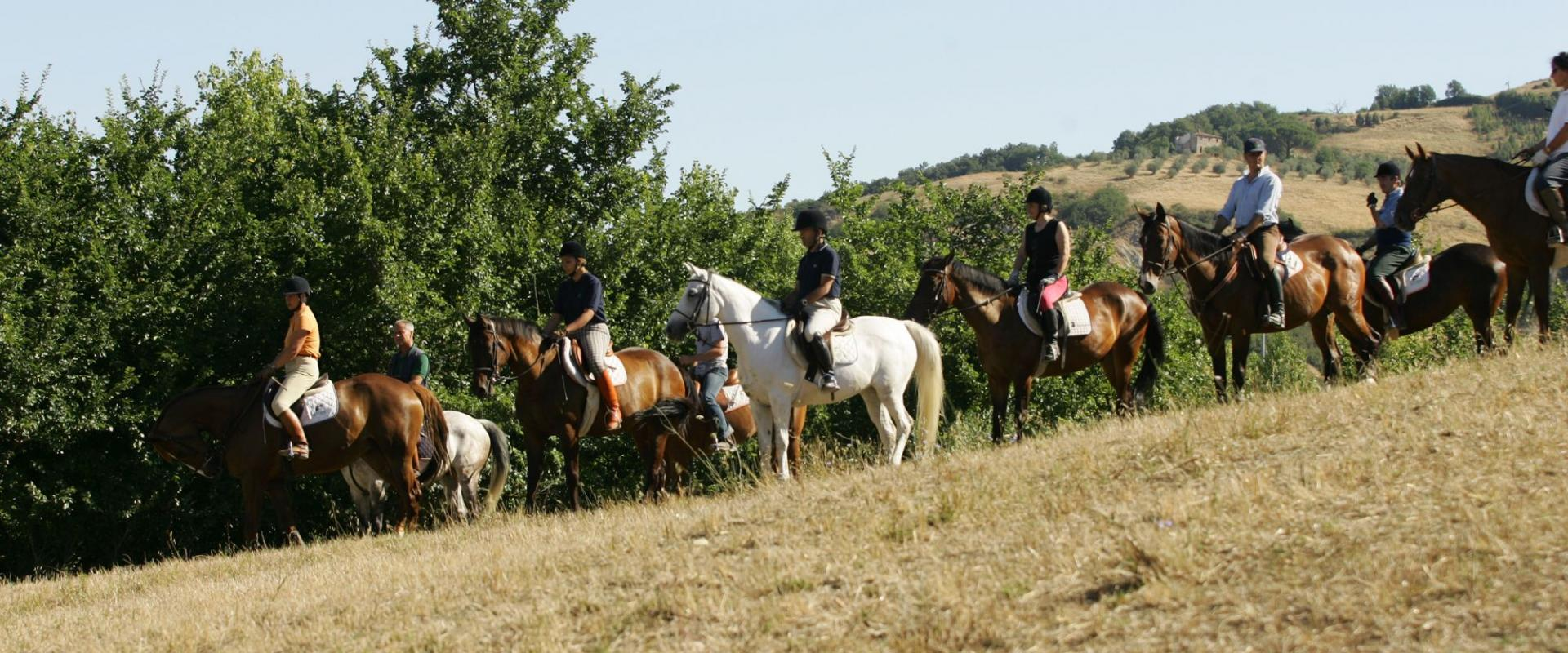 Equitation The Il Poggio Farmhouse and Resort in Siena